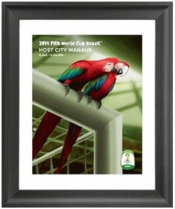 Manaus 2014 FIFA World Cup Host City Framed Print