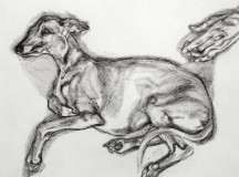Lucien Freud's Aged Whippet Races Away at Bonhams