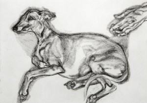 LUCIAN FREUDS AGED WHIPPET