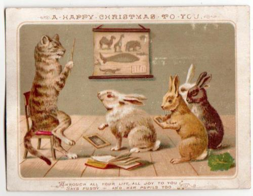 victorian xmas card pussy teaching rabbit pupilssold for 147 june 2016