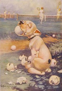 bonzo dog Fred The Ball Boy postcard