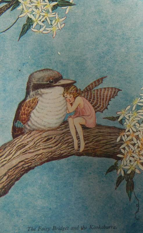 outhwaite the fairy bridget and the kookaburra