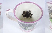Collecting Frog Mugs – The Frog Mug A Nice Surprise