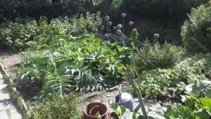 vegetable garden at hill top beatrix potter