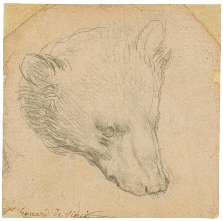 Hear of a Bear by Leonardo da Vinci sets world record for drawing at Christies