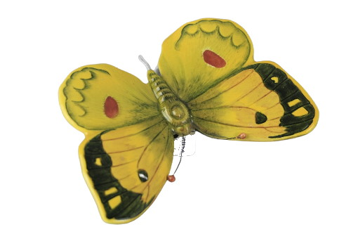 1490 Clouded Yellow Butterfly
